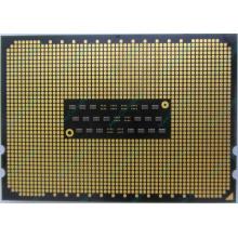 AMD Opteron 6128 OS6128WKT8EGO (Копейск)