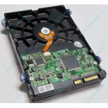 Жесткий диск 80Gb HP 404024-001 449978-001 Hitachi 0A33931 HDS721680PLA380 SATA (Копейск)