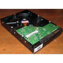 Жесткий диск 500Gb WD WD5000AAKX HP 634605-003 613208-001 7.2k SATA (Копейск)