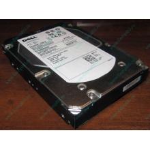 Жесткий диск 300Gb 15k Dell 9CH066-050 6G SAS (Seagate Cheetach ST3300656SS 15K.6) - Копейск